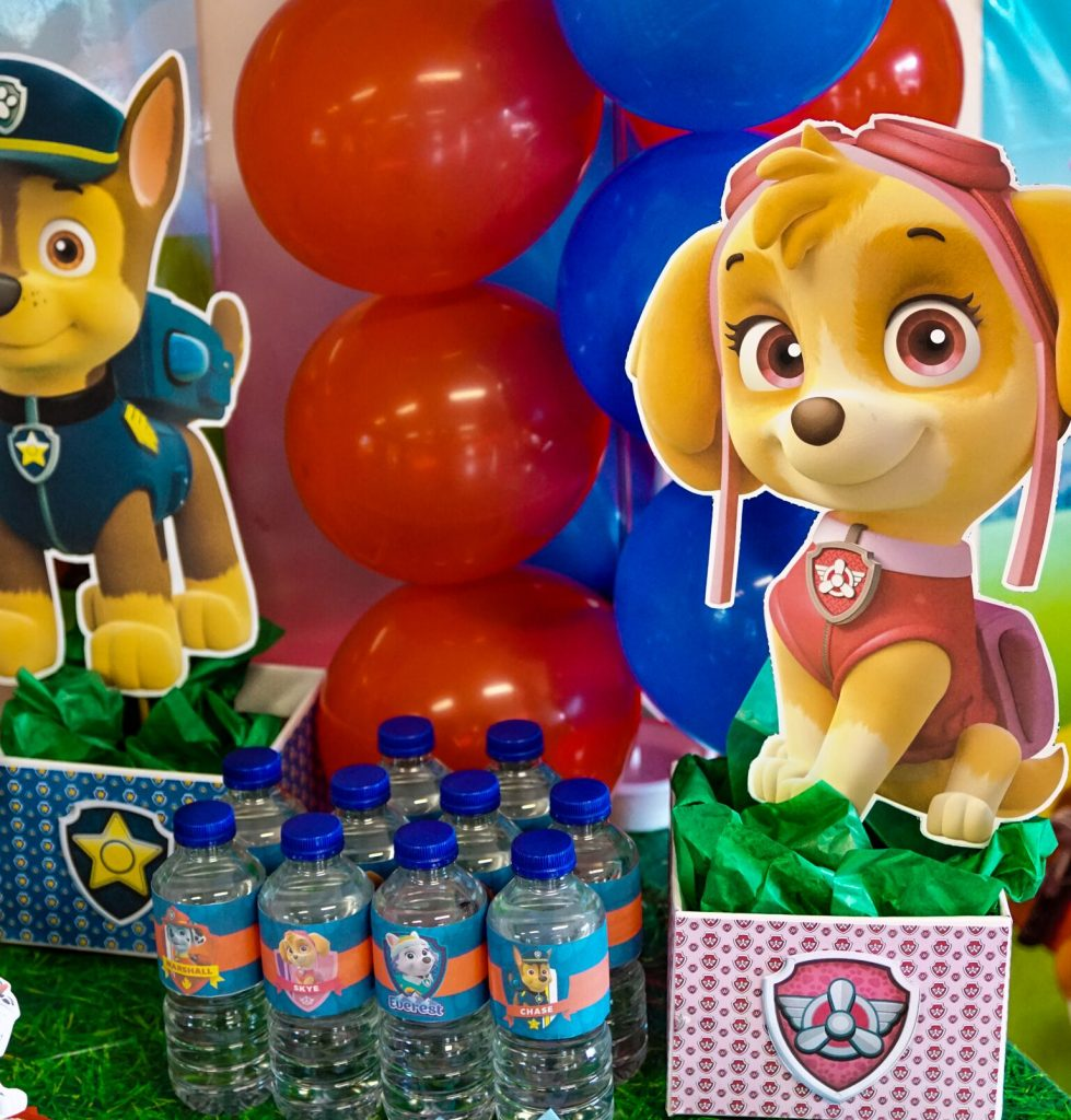 How to make Paw Patrol Centerpiece table decorations